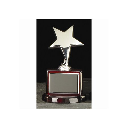 Silver-plated Star Trophy (Star Trophy)