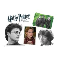 Advanced Graphics Harry Potter 7 Harry Potter Group Wall Decal