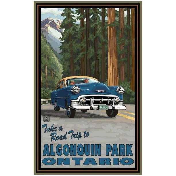 Algonquin Park Ontario Road Trip Woods Giclee Art Print Poster By Paul A Lanquist 24 X 36 Walmart Com Walmart Com