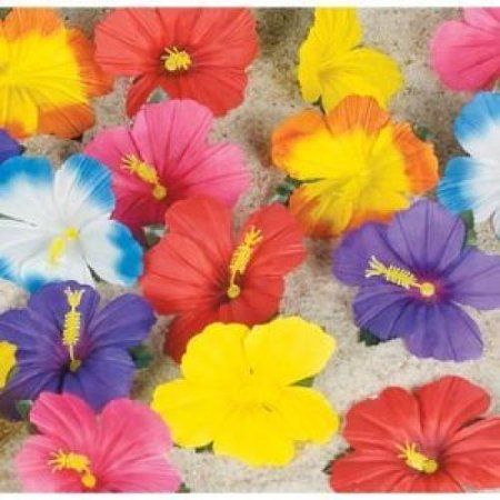 Hibiscus Wedding - Hibiscus Flowers for Tabletop Decoration (24)