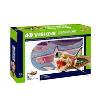 4D Vision Great White Shark Anatomy Model, 13 long 4D Great White Shark model contains 20 detachable organs and body parts By Fame Master