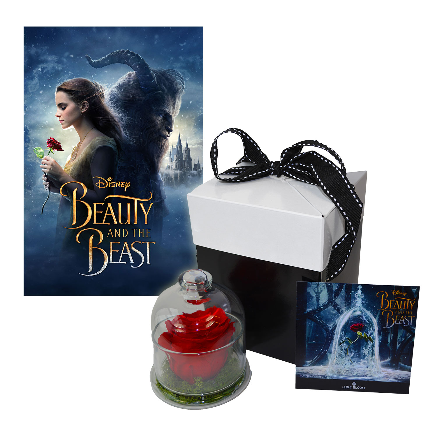 Beauty and the Beast Movie Gift Set - Enchanted Rose & Beauty and the Beast Digital Movie