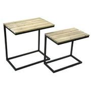 Sagebrook Home 2 Piece Metal and Wood End Table Set