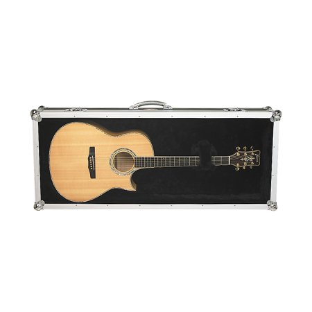 22f8b4c6300 RockCase by Warwick Acoustic Guitar Plexiglas Display Case Black -  Walmart.com