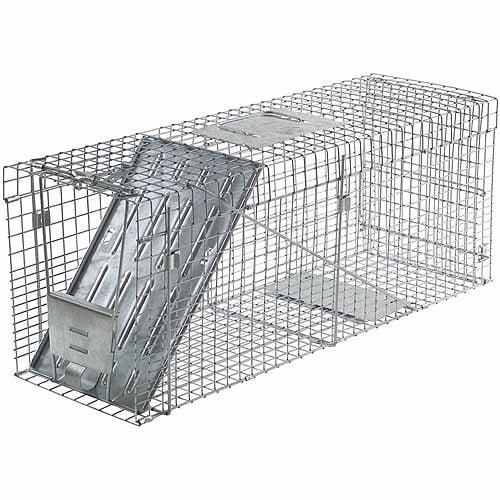 Havahart Large 1-Door Collapsible Trap