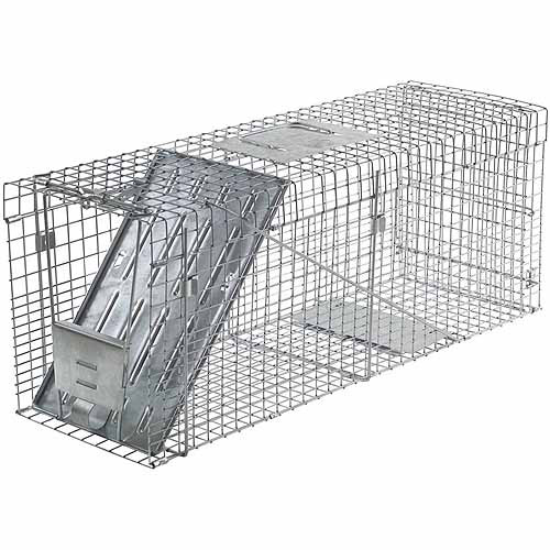 Havahart Large 1-Door Collapsible Trap