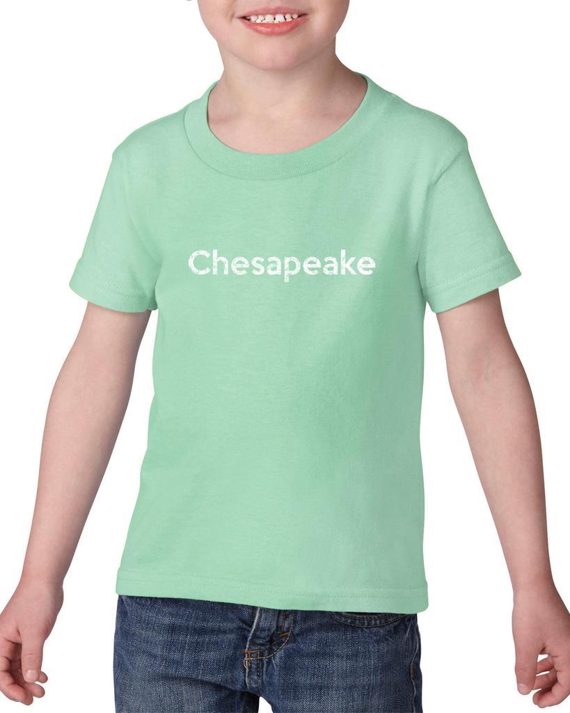 Artix Chesapeake VA Virginia Beach Map Cavaliers Wahoos Flag Home University of Virginia Heavy Cotton Toddler Kids T-Shirt Tee Clothing