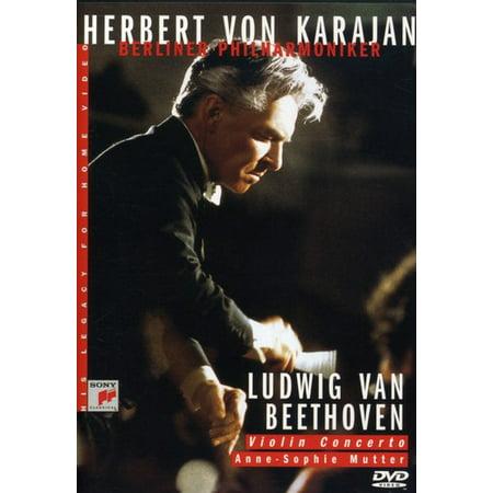 Concerto in D Major for Violin & Orchestra