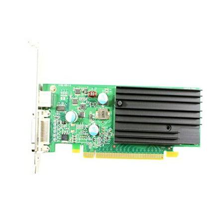 - Dell NVIDIA GeForce 9300GE 256MB DDR2 64-Bit PCIe x16 Video Card- K192G - Refurbished