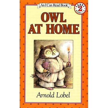 Owl Pellets Lesson - Owl at Home (Paperback)