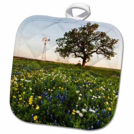 3dRose flowers and windmill in the Texas hill country. - Pot Holder, 8 by