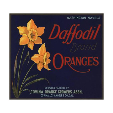 Daffodil Brand - Covina, California - Citrus Crate Label Print Wall Art By Lantern Press