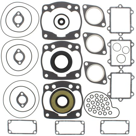 New Complete Gasket Kit w/ Oil Seals Arctic Cat Powder