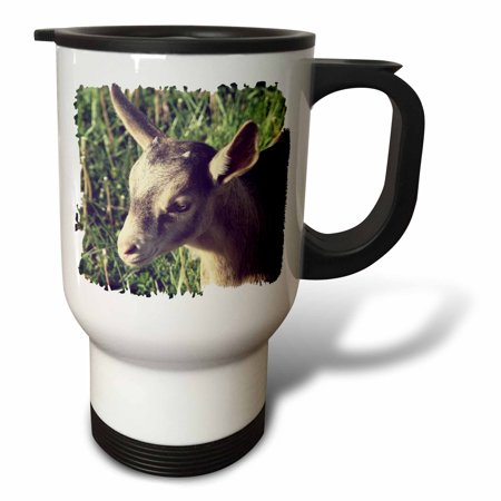 3dRose Dairy Goat Billy Kid Photographed by Angelandspot - Travel Mug, 14-ounce, Stainless Steel - Photo Travel Mugs