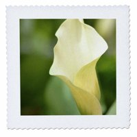 3dRose Spring Calla Lily- White Flowers- Floral Photography - Quilt Square, 10 by 10-inch