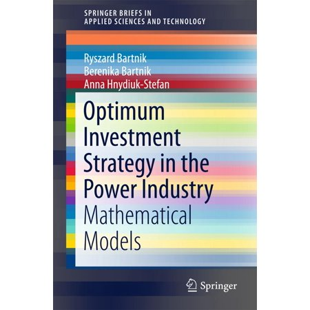 Optimum Investment Strategy in the Power Industry -