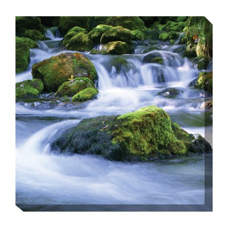 West of the Wind Mossy Rocks #2 Outdoor Canvas Art - 24 x 24 -