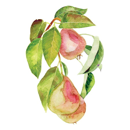 Watercolor Pears Art Fruit Kitchen Wall Shelf Sign Decoration Small Size, 7.5x10.5 Inch
