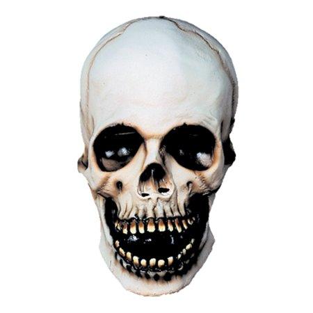 Skull Adult Halloween Mask Accessory
