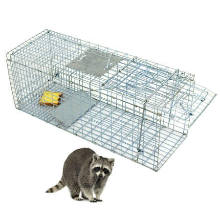 Large Raccoon Trap - Zeny Humane Small Live Animal Control Steel Trap Cage 31