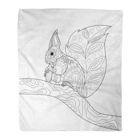 ASHLEIGH Throw Blanket Warm Cozy Print Flannel Squirrel Sitting on Tree Branch and Eating Pine Cone Freehand Sketch for Adult Comfortable Soft for Bed Sofa and Couch 50x60 Inches (Pine Cone Crafts For Adults)