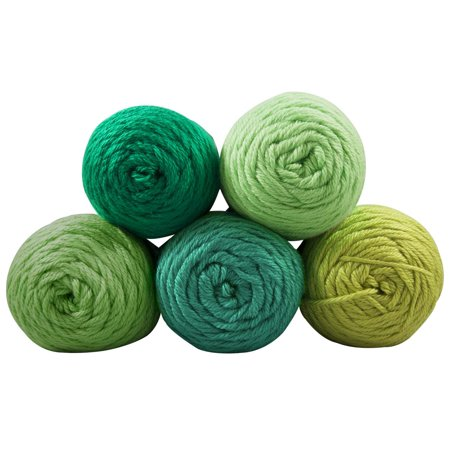 - Caron Simply Soft Yarn Pack