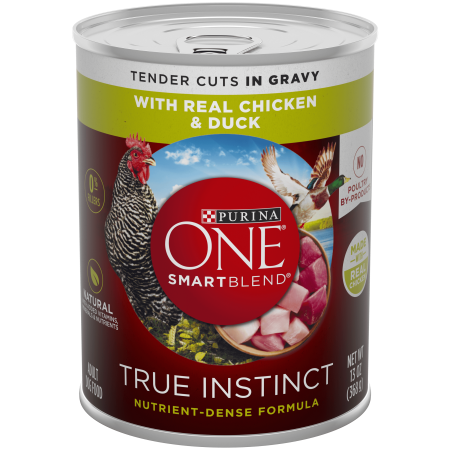 Purina ONE Natural Gravy Wet Dog Food, SmartBlend True Instinct Tender Cuts With Real Chicken & Duck - 13 oz. (Best Way To Cut Chicken Wings)