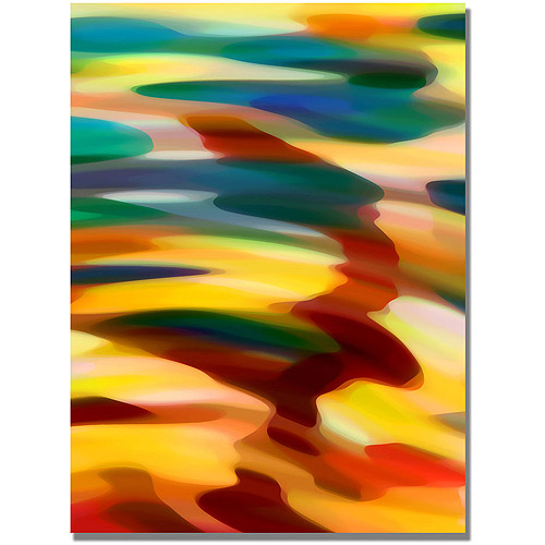 "Trademark Fine Art ""Color Fury"" Canvas Wall Art by Amy Vangsgard"