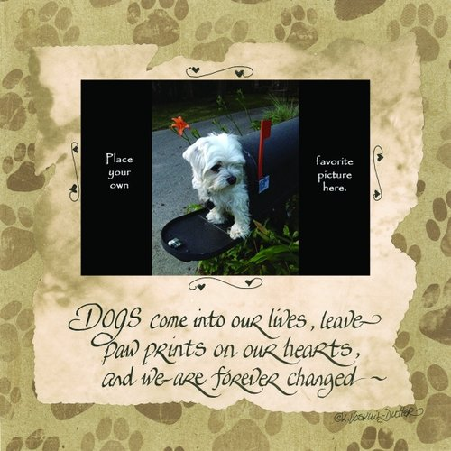 LPG Greetings Life Lines Dog Photo by Lori Voskuil-Dutter Graphic Art Plaque