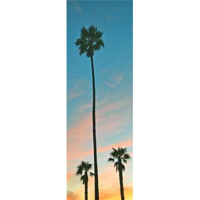 Sunset Palms Poster Print by Gail Peck, 8 x 24 - Small - image 1 of 1