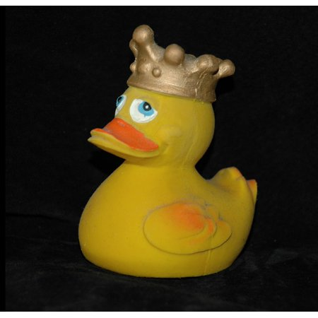 Framed Art for Your Wall King Squeak Duck Rubber Duck Crown Duck Bath Duck 10x13 - Crown Frame