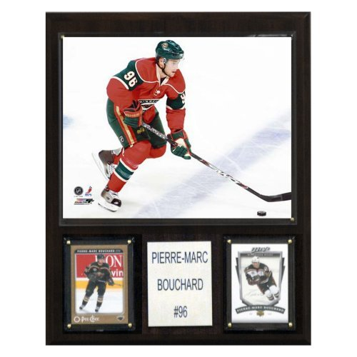 NHL 12 x 15 in. Pierre-Marc Bouchard Minnesota Wild Player Plaque