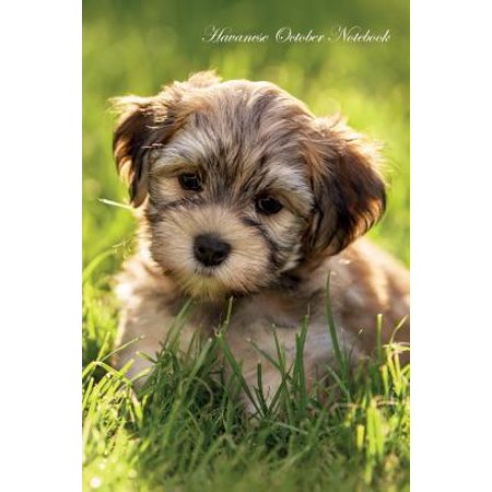 List Of Special Occasions (Havanese October Notebook Havanese Record, Log, Diary, Special Memories, to Do List, Academic Notepad, Scrapbook &)