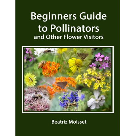 Beginners Guide to Pollinators and Other Flower Visitors -