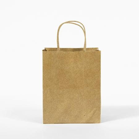 12CT  Kraft Bag, Birthday Party Gift Favor Bag Set, Biodegradable Paper, Gift Expressions _Medium