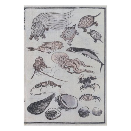 Undersea Creatures, from a Manga (Colour Woodblock Print) Print Wall Art By Katsushika Hokusai