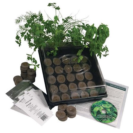Indoor Culinary Herb Garden Starter Kit, Grow Fresh Cooking Herbs & Spices - Basil, Dill, Thyme, Cilantro & More
