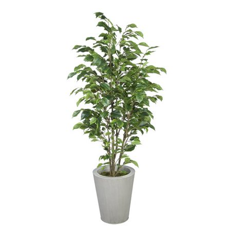 House of Silk Flowers Inc. Ficus Tree in Planter