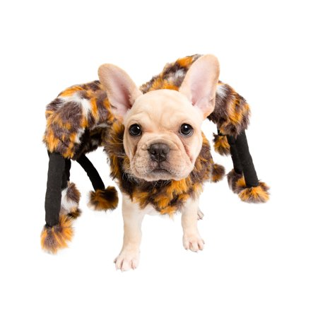 Spider Dog Costume, Halloween Pet Costume - Pet Krewe - FREE SHIPPING (Dog Halloween Costume Ideas Homemade)