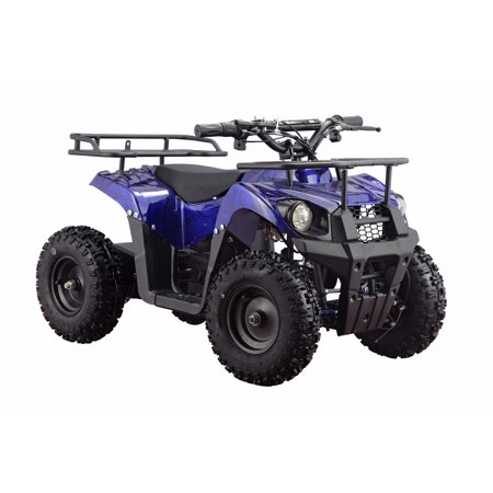Monster 36V 500W Electric Quad Battery-Powered MINI ATV ...