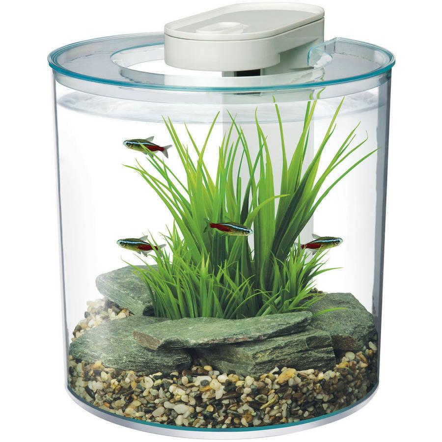 Marina 2.6-Gallon 360-Degree Aquarium Starter Kit
