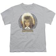 Labyrinth 25 Years Big Boys Shirt