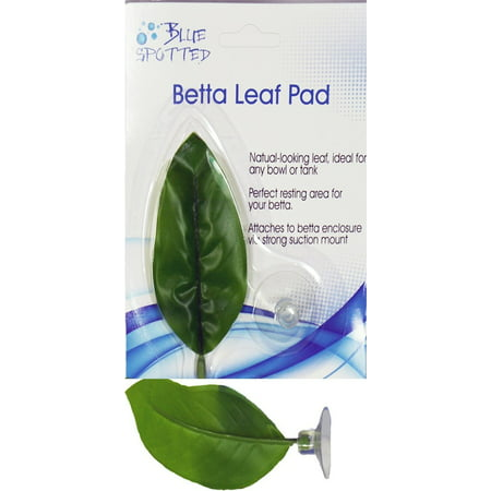 Blue Spotted Betta Leaf Pad For Betta Fish, Betta Plant For Betta Fish