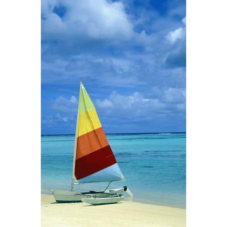 Catamaran On Tropical Beach Stretched Canvas - Paul Miles  Design Pics (12 x
