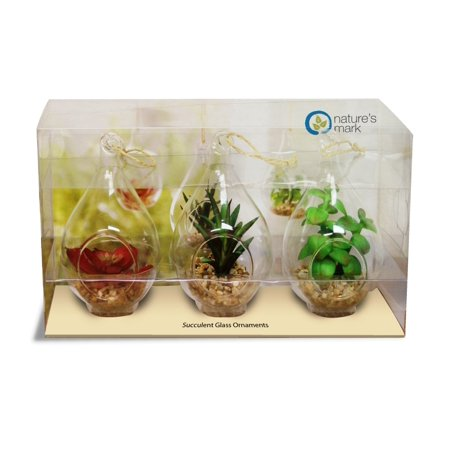 Set of 3 Glass Teardrop Faux Succulents