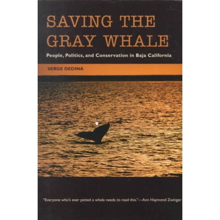 Saving The Gray Whale  People  Politics  And Conservation In Baja California