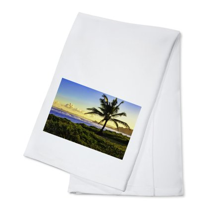 Guam   Palm   Sunset   Lantern Press Photography  100  Cotton Kitchen Towel