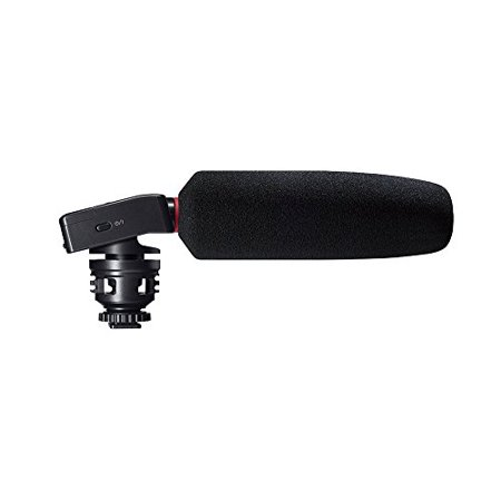 Small Shotgun Microphone - Tascam DR-10SG Camera-Mountable Audio Recorder with Shotgun Microphone