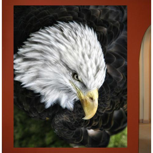 Wallhogs Batie Bald Eagle Wall Mural
