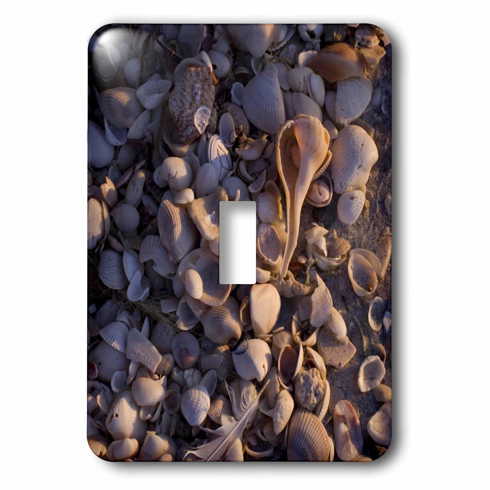 3dRose Sea shells, Captiva Island, Florida - US10 MPR0288 - Maresa Pryor, Double Toggle Switch